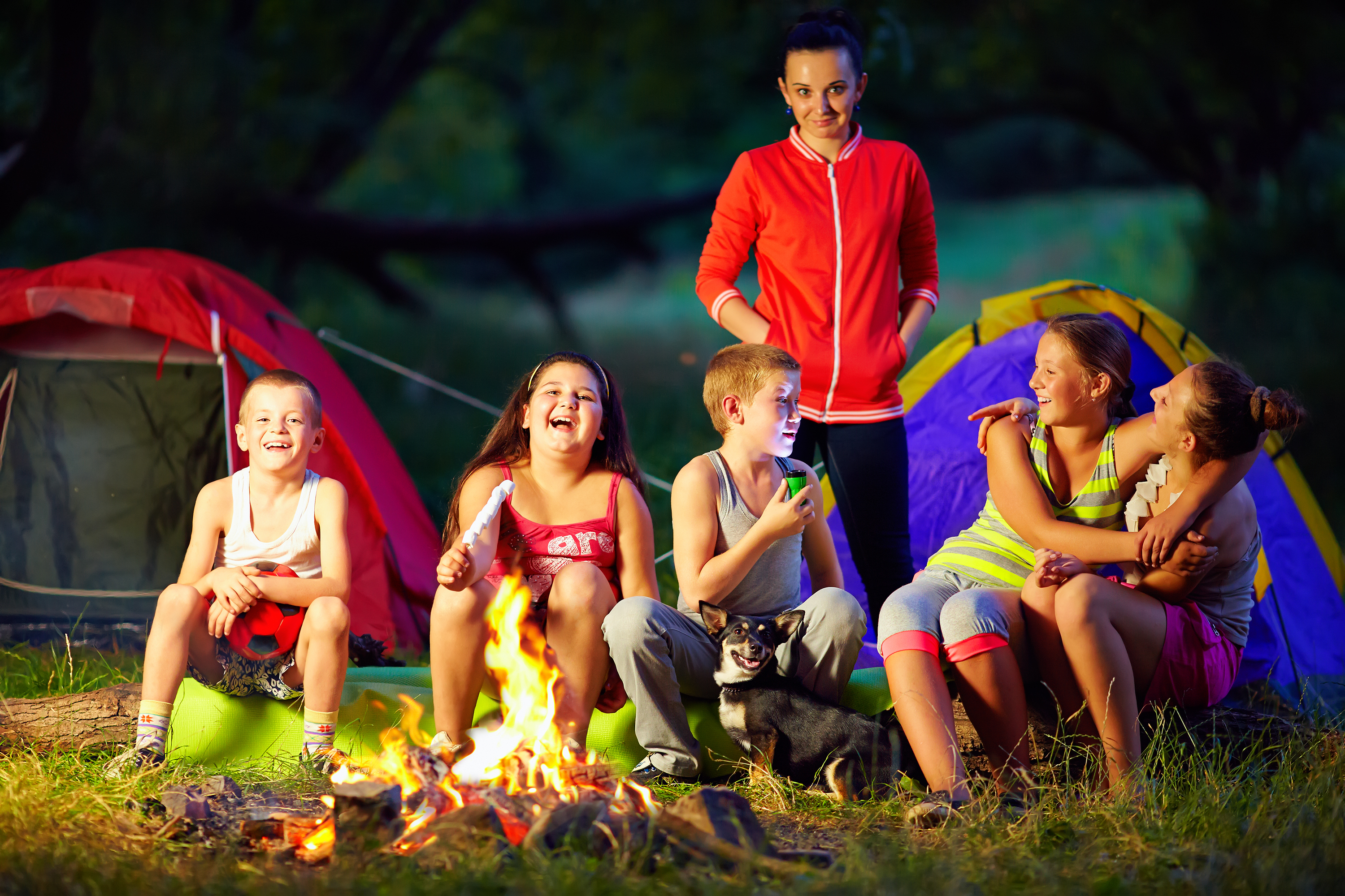 KIds Having Fun Around Campfire