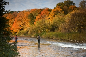 Fall Trout Fishing