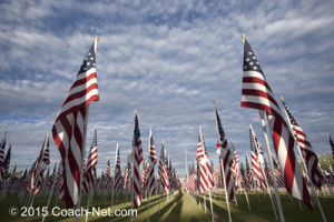 American-flags-in-field
