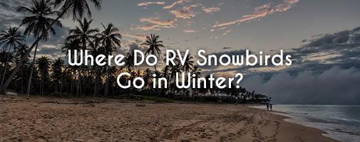 Where do RV Snowbirds go in the winter?