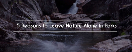 Leaving Nature Alone