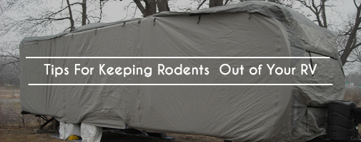 Tips For Keeping Rodents Out of Your RV
