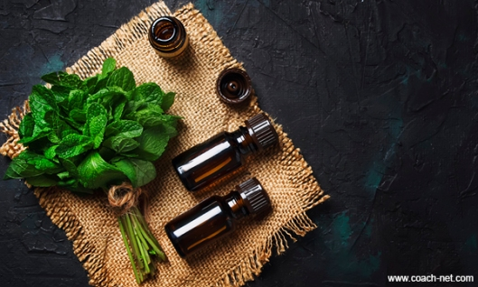 Mint Based Products